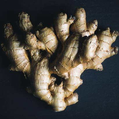 perkins-ginger-square